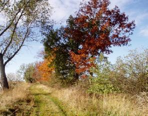 Pilgerweg in Herbstfarben - Berlin-Bad Wilsnack